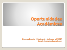 Hermes Renato Hildeb..