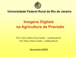 Imagens digitais na agricultura de precisão