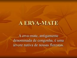 A ERVA-MATE