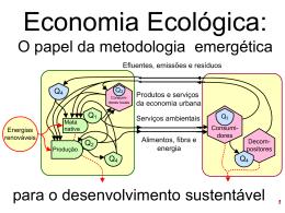 O papel da Economia Ecológica.
