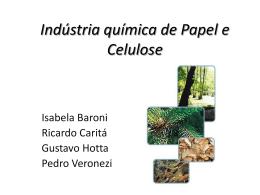 Indústria química de Papel e Celulose