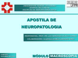 Apostila Macroscopia
