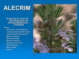 ALECRIM - Fazenda do Cerrado
