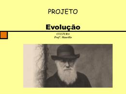 Evolução - Colégio Alexander Fleming