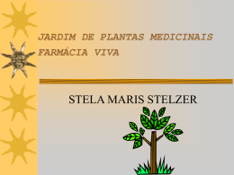 JARDIM DE PLANTA MEDICINAIS FARMÁCIA VIVA