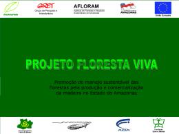 (MFSPE) no Amazonas - Avaliação geral e subsídios