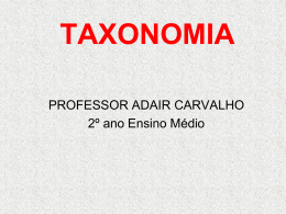 2-ano-aula-taxonomia