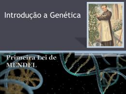 Segunda Lei de Mendel