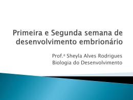 Segunda semana de desenvolvimento embrionário