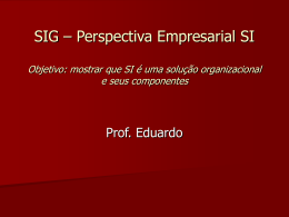 SIG – Perspectiva Empresarial SI Objetivo: mostrar