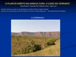 Plantio direto - Universidade Federal de Pernambuco