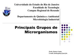 Principais grupos de microrganismos
