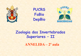 Annelidab