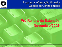 Programa Informação Virtual e Gestão de
