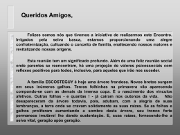 Sinopse Histórica - Flávio Escosteguy Merino