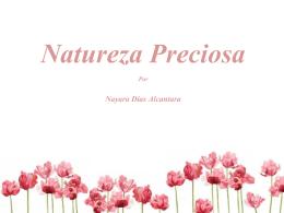 Natureza Preciosa - TalenTO Creativo