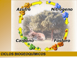 ciclos biogeoquímicos - Universidade Federal de Campina Grande