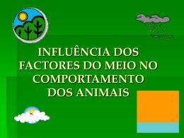 1201271912_influencia_fact_meio