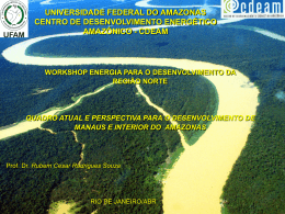 Workshop Energia Para o Desenvol Int