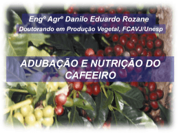 Nutrição e adubação do cafeeiro