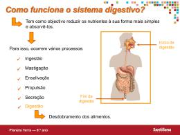 Como funciona o sistema digestivo? Planeta Terra — 9.º ano