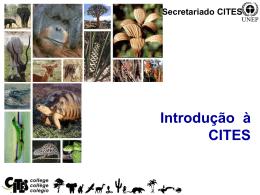 Introdução à CITES Secretariado CITES