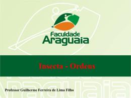 Aula 17. Insecta – Ordens (mais corriqueiras)
