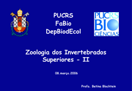 Morfologia de insetos