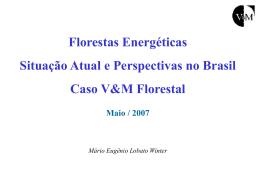Florestas Energéticas - Situação Atual e Perspectivas no Brasil