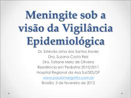 Meningite - Paulo Roberto Margotto
