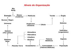 INDIVÍDUO - Colégio Santa Cruz