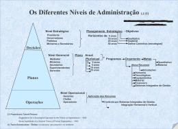 Os Diferentes Níveis da Organização. (Estratégico, Gerencial e