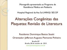 Revisão de Literatura - Paulo Roberto Margotto