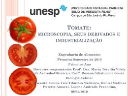 tomate: microscopia, seus derivados e industrialização