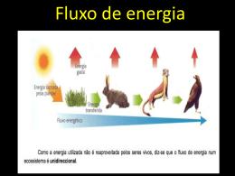 ecologia 2 - Curso e Colégio Acesso