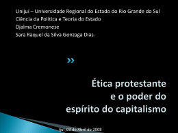 Slide 1 - Capital Social Sul