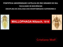 Mallophaga-Cristiano