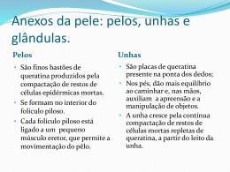 Pele - Marcelinas