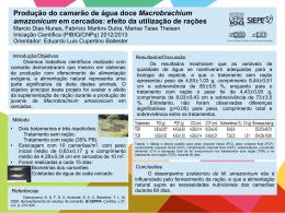 Produção do camarão de água doce Macrobrachium amazonicum