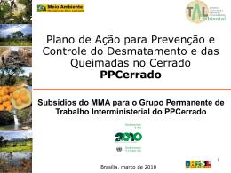 Apresentacao_powerpoint PPCerrado coletiva MMA_mar2010