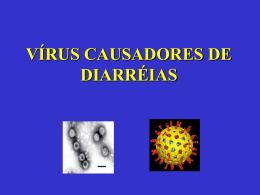 Vírus (67% dos casos)