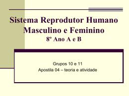 Revisão Avaliação Bimestral de Ciências 4º bimestre