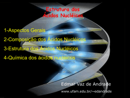 Etrutura dos Ácidos Nucléicos