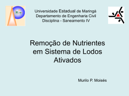 Slide 1 - Departamento de Engenharia Civil