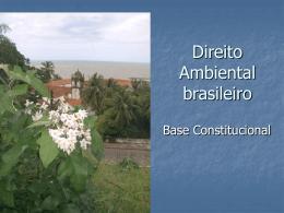 Direito Ambiental brasileiro - Sem