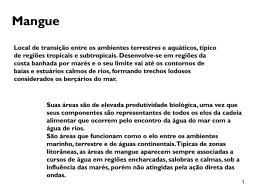 Ecossistema Mangue - clienteg3w.com.br