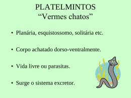 platelmintos_2004