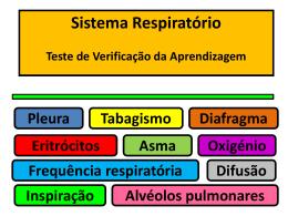 Soluções - portefolionaturas.net