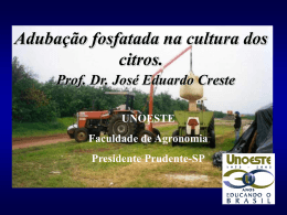 Palestra Jose Creste