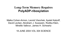 Long-Term Memory Requires PolyADP-ribosylation